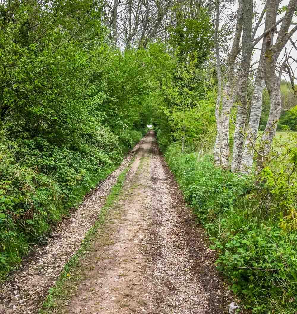 footpath straight ahead