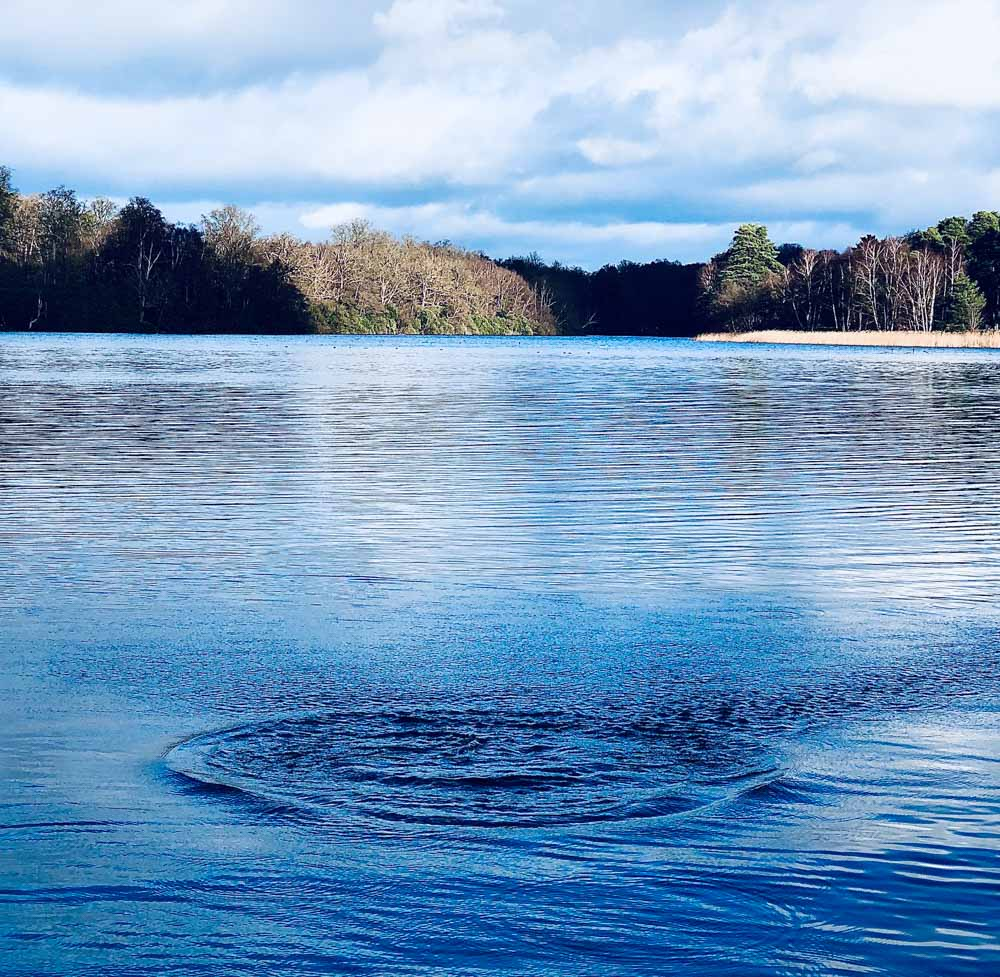 across-the-water Virginia Water Lake - A Springtime Walk