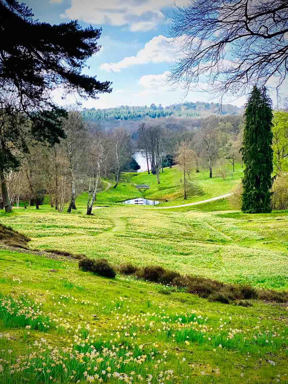 hill-view Virginia Water Lake - A Springtime Walk