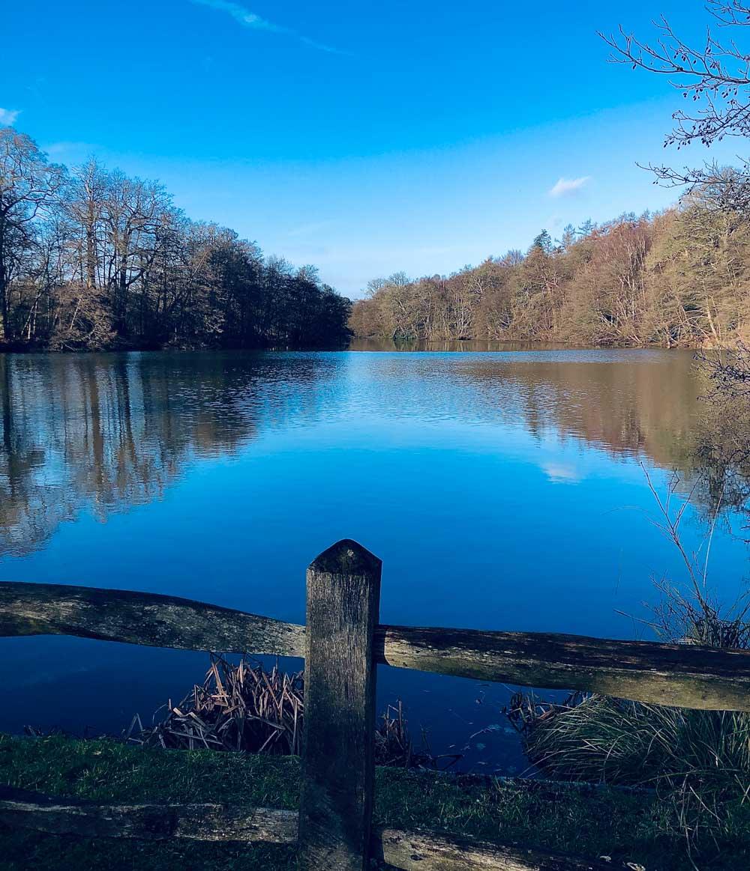 lake Virginia Water Lake - A Springtime Walk
