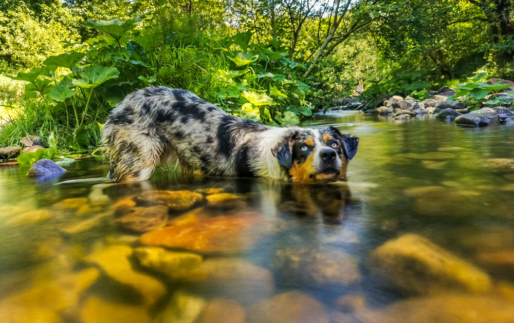 Silky Water Photography With The Huawei P30 Pro