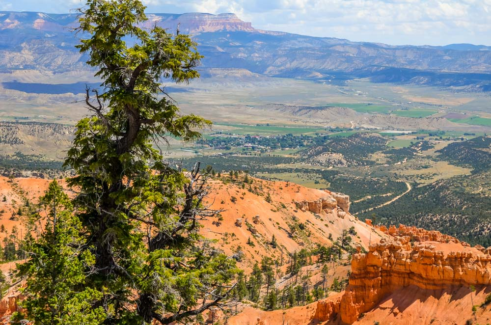 Picture-2-1 The Hoodoos and Bryce Canyon National Park, Utah
