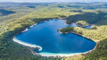 Fraser Island - The Largest Sand Island In The World
