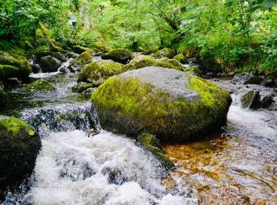 Aira Force Waterfall - Beauty In Ancient Woodland
