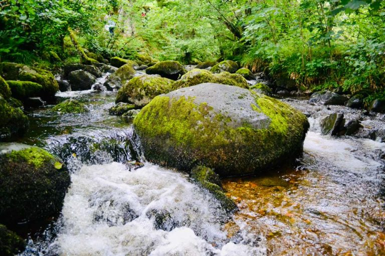 Aira Force Waterfall – Beauty In Ancient Woodland