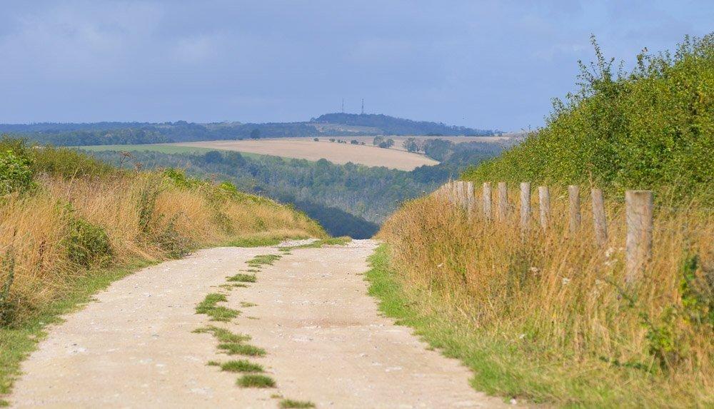 Picture-2-1 Arun Valley Walk, Wepham Down And The Village of Burpham