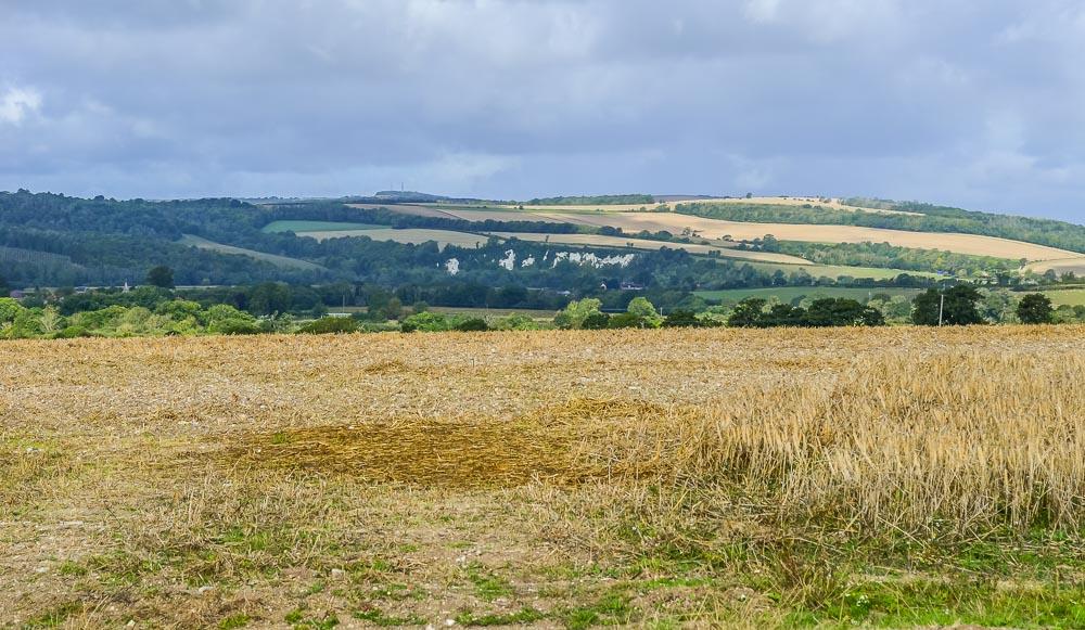 Picture-3-1 Arun Valley Walk, Wepham Down And The Village of Burpham