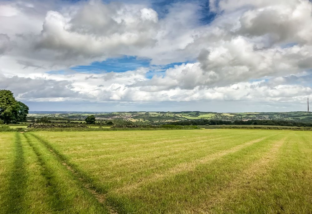 grass footpath through field