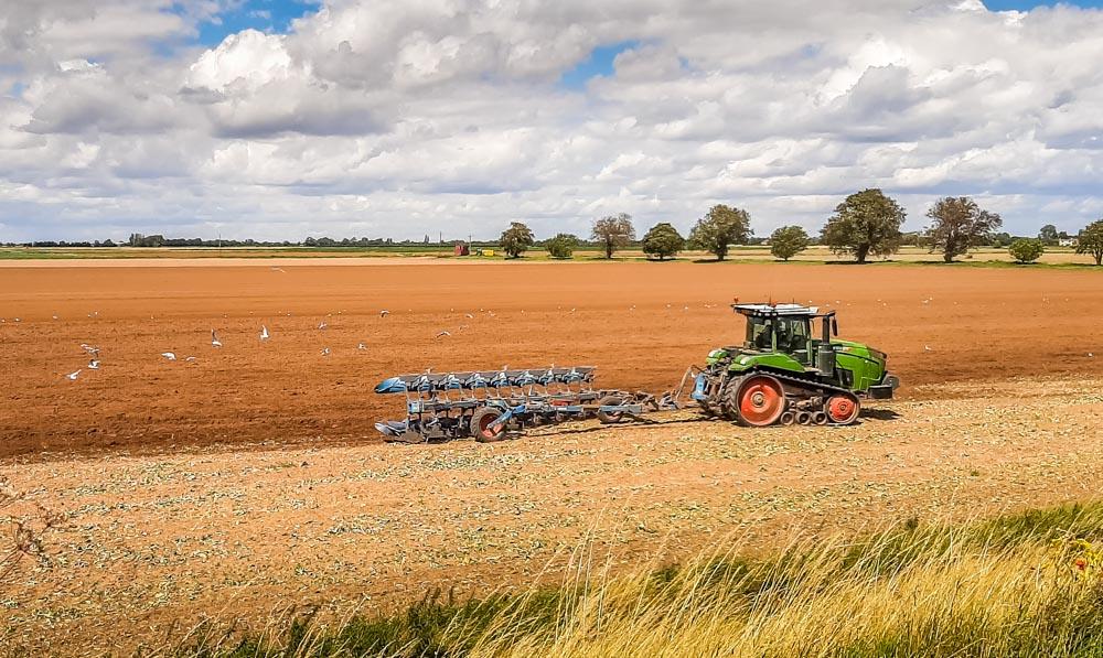 farmers at work in fields