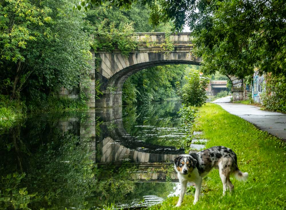 canal bridge near leeds