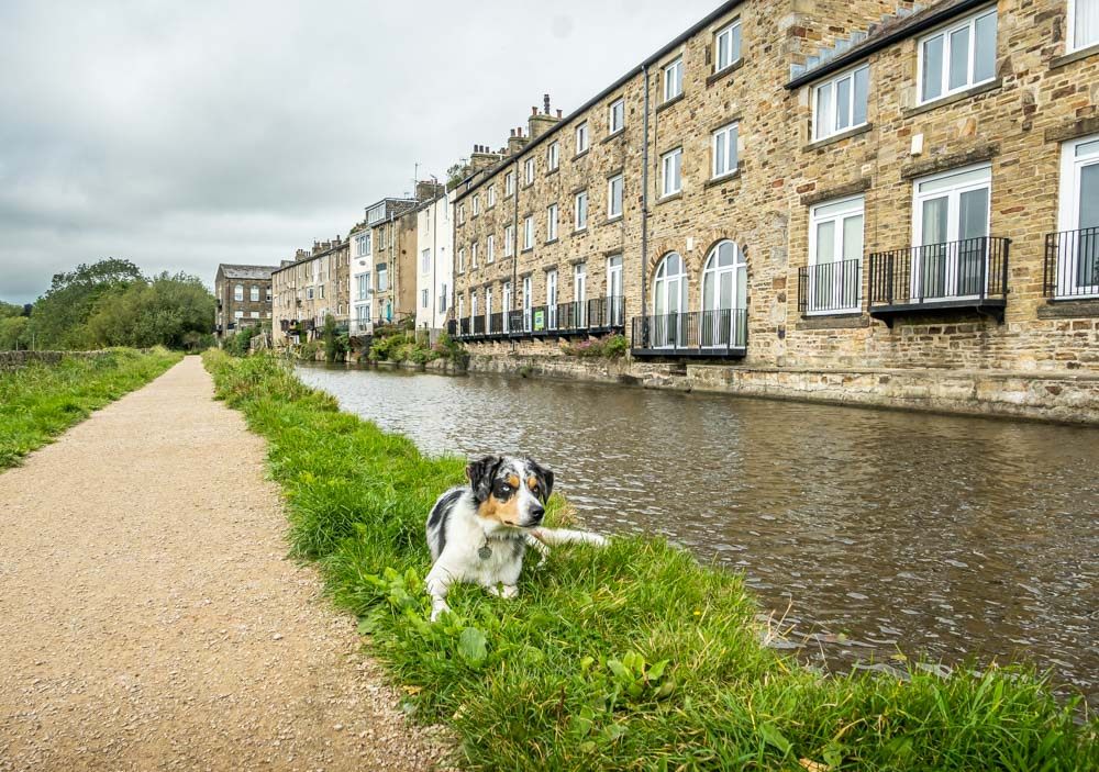 L1019547 Walking Bingley To Skipton On The Leeds & Liverpool Canal