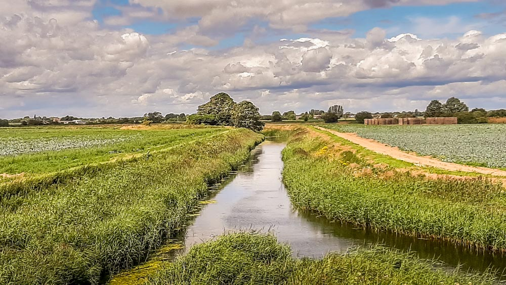 The Lincolnshire fens