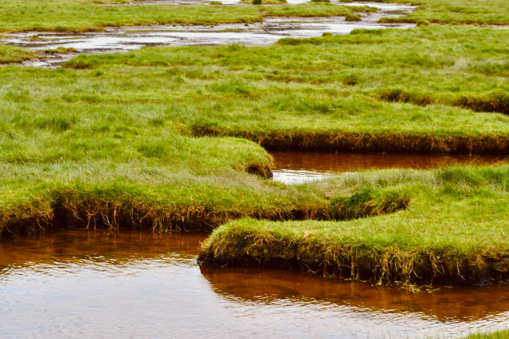DSC_0766 Jenny Brown's Point - A Lancashire Coast Walk