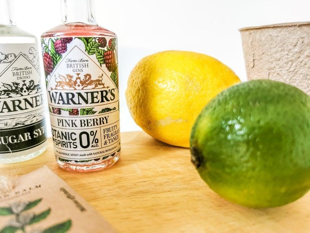Warner's 0% Botanical Garden Gin - A Real Natural Flavour