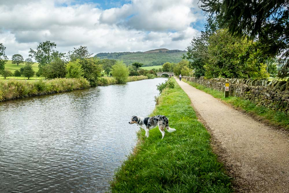 new towpath for Leeds & Liverpool canal