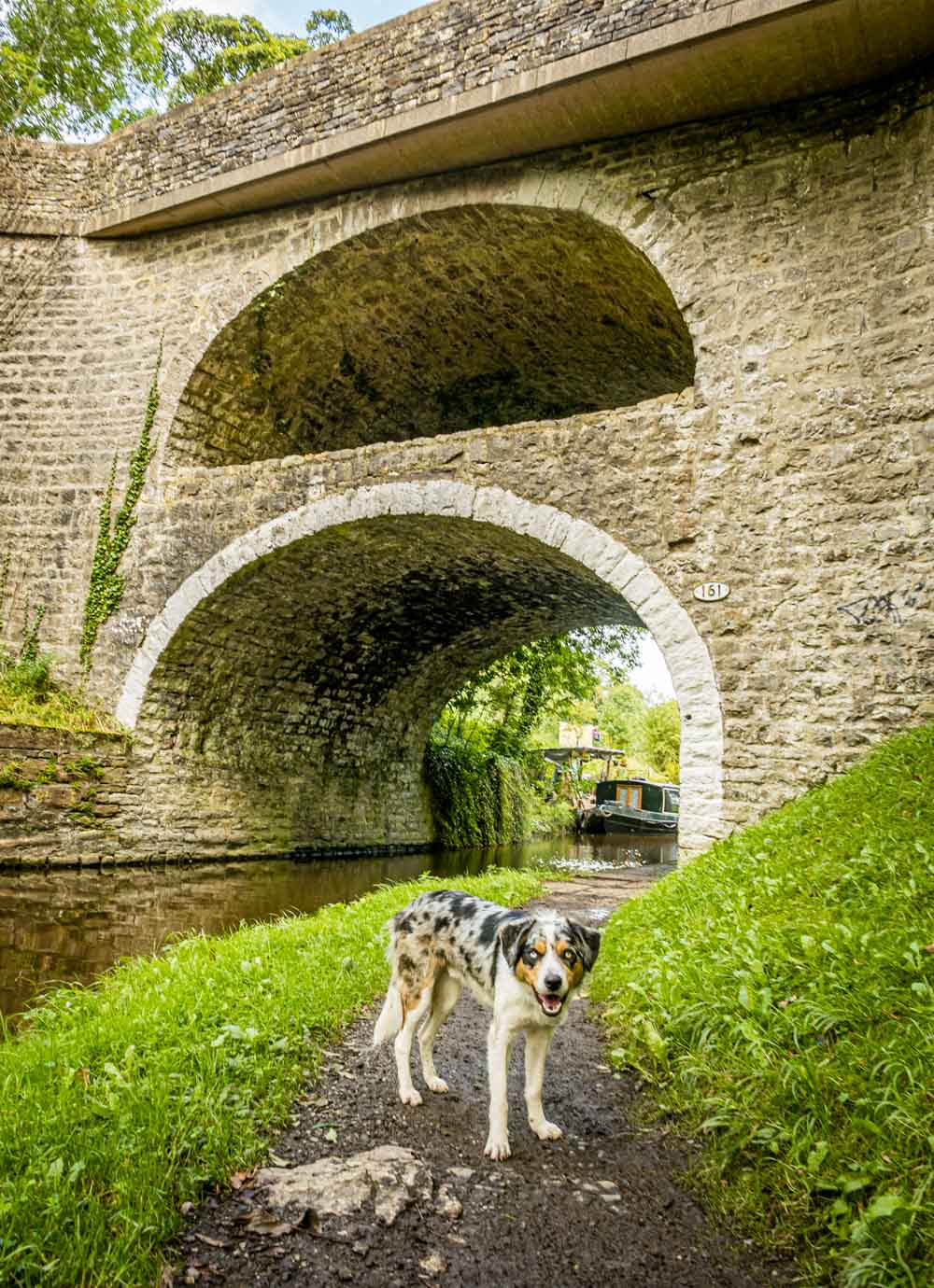 canal bridge on the A59