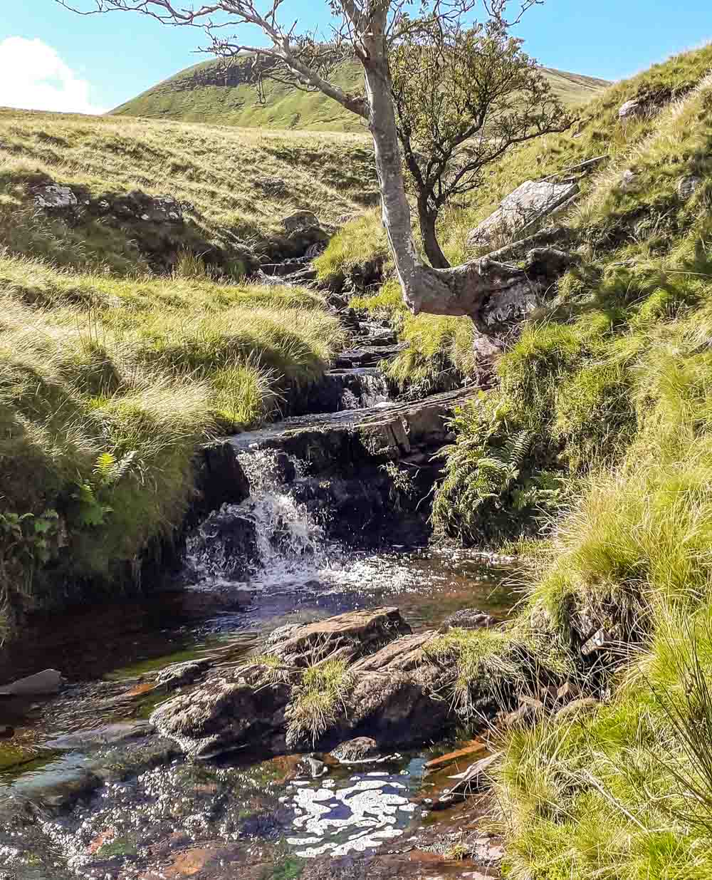 streams and nearby waterfalls