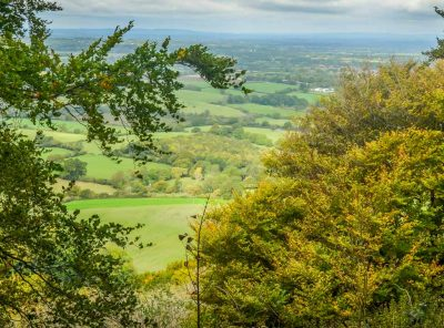 Chanctonbury Ring, An Iconic South Downs Walk