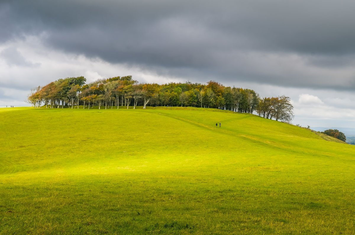 Picture-9 Chanctonbury Ring, An Iconic South Downs Walk