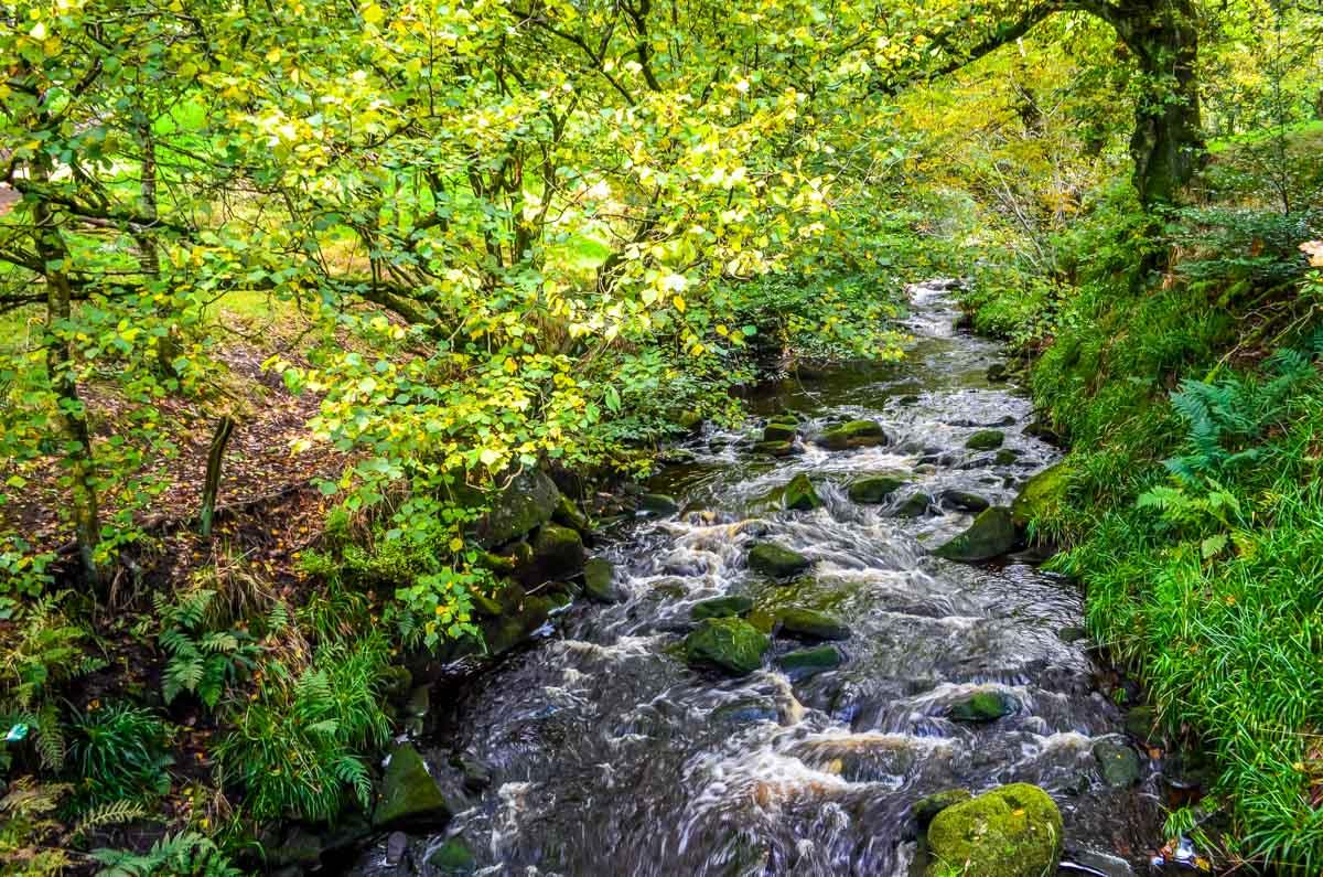 pretty staffordshire river