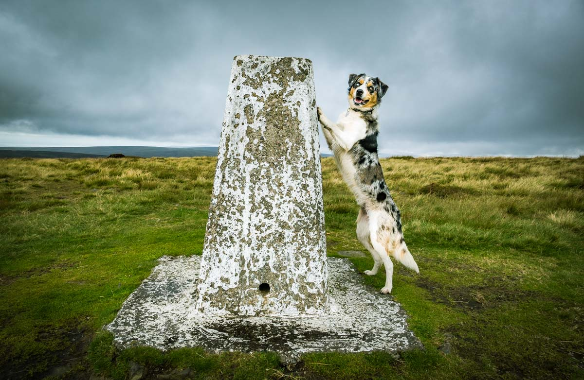 at-the-top A Walk Up Fair Snape Fell and Parlick