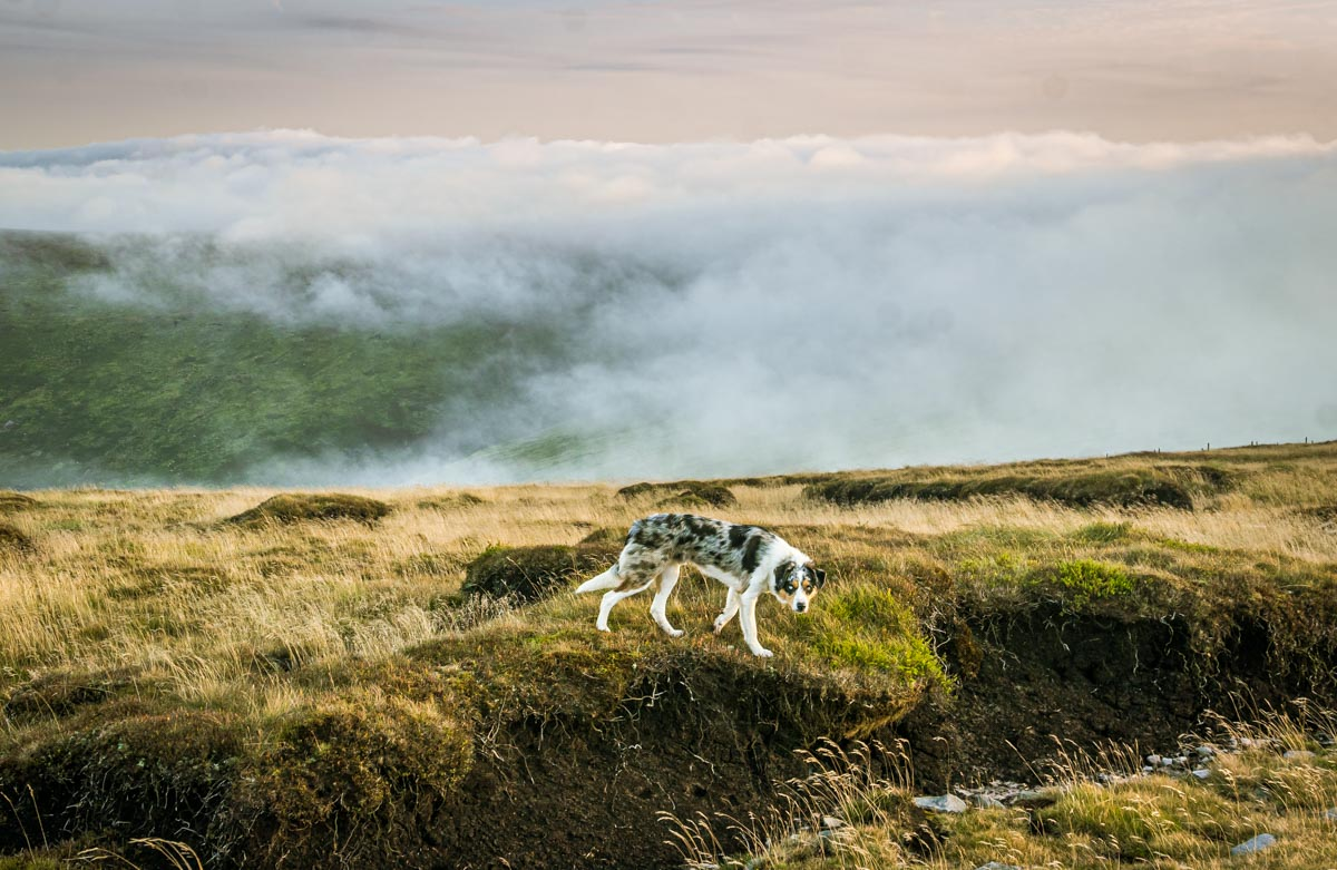 cloud-inversion A Walk Up Fair Snape Fell and Parlick