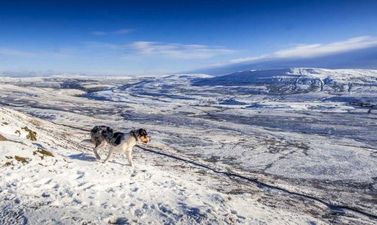 A Winter Climb Of Pen-y-ghent