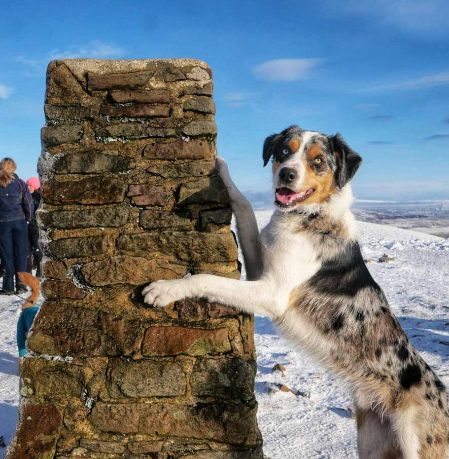 pen-y-ghent-trig-point-edited A Winter Climb Of Pen-y-ghent