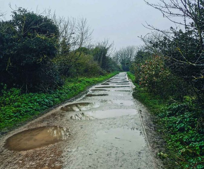 puddles on the path