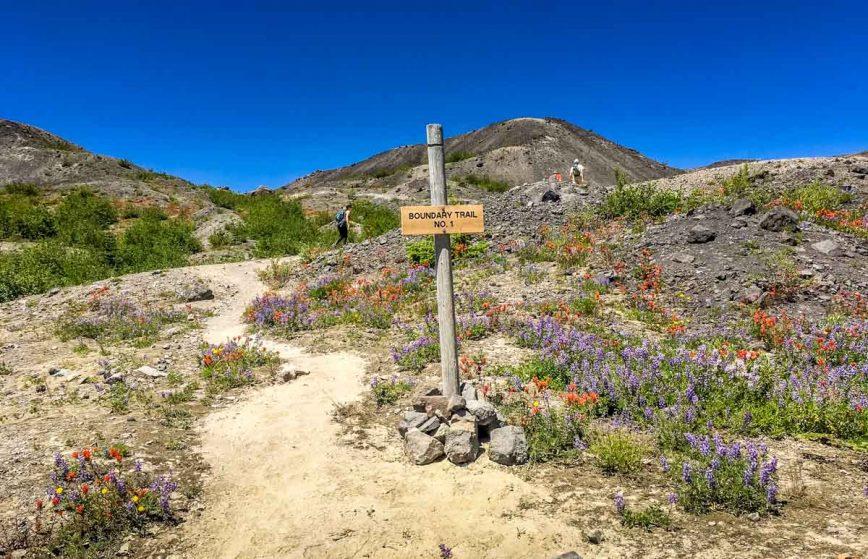 Boundary Trail 1 marker