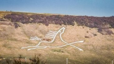 chalk white horse on Cheriton Hill