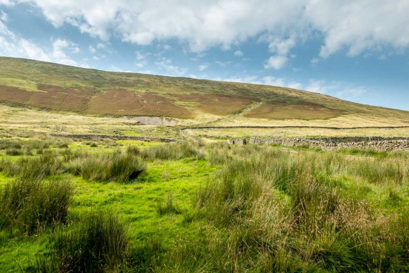 looking up pendle hill