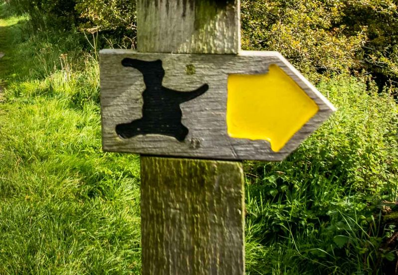 pendle witch sign