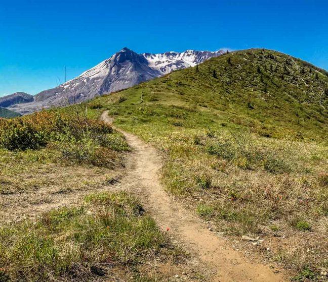 trail up Harry's Ridge