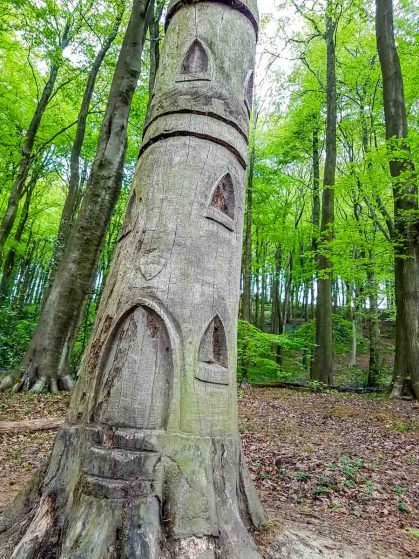 Wood sculptures at Linacre