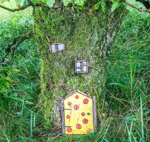 fairy house door in tree