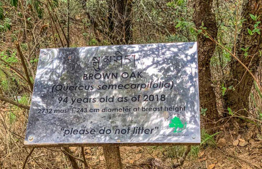 oakt trail sign