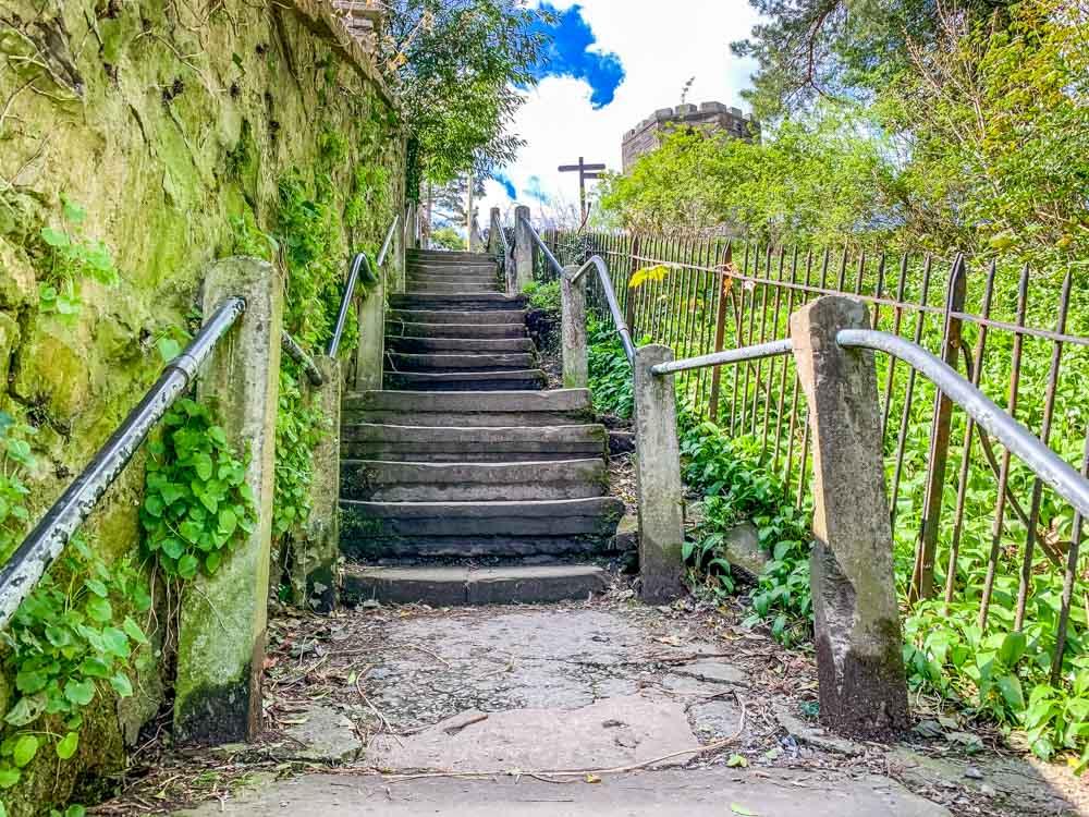 radical steps