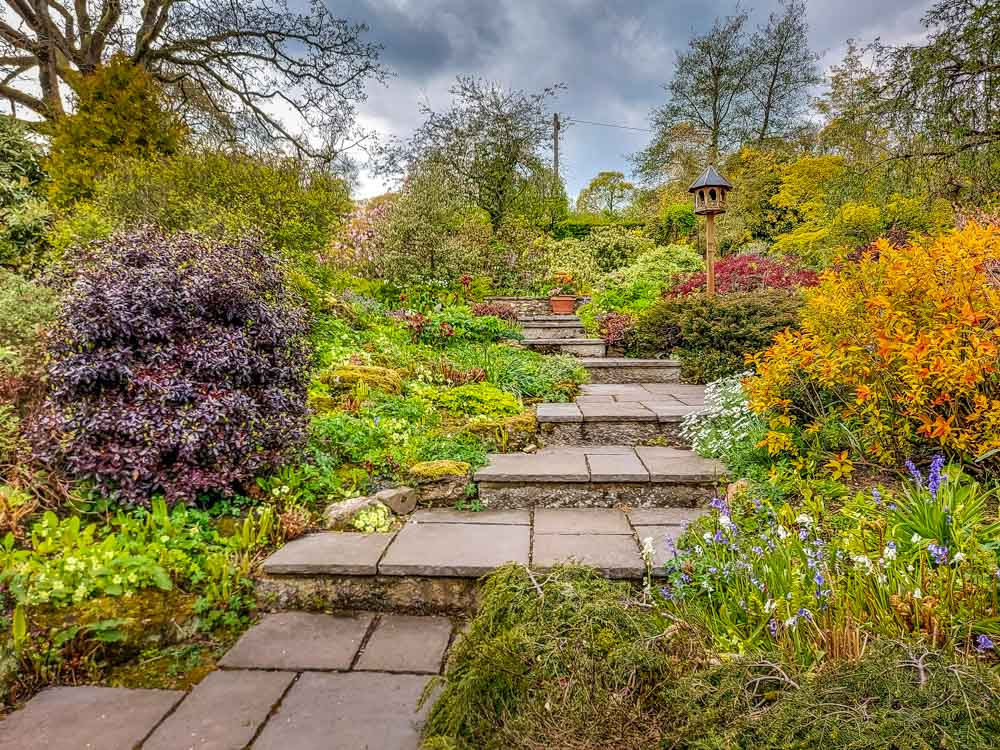 Towards the terraced garden