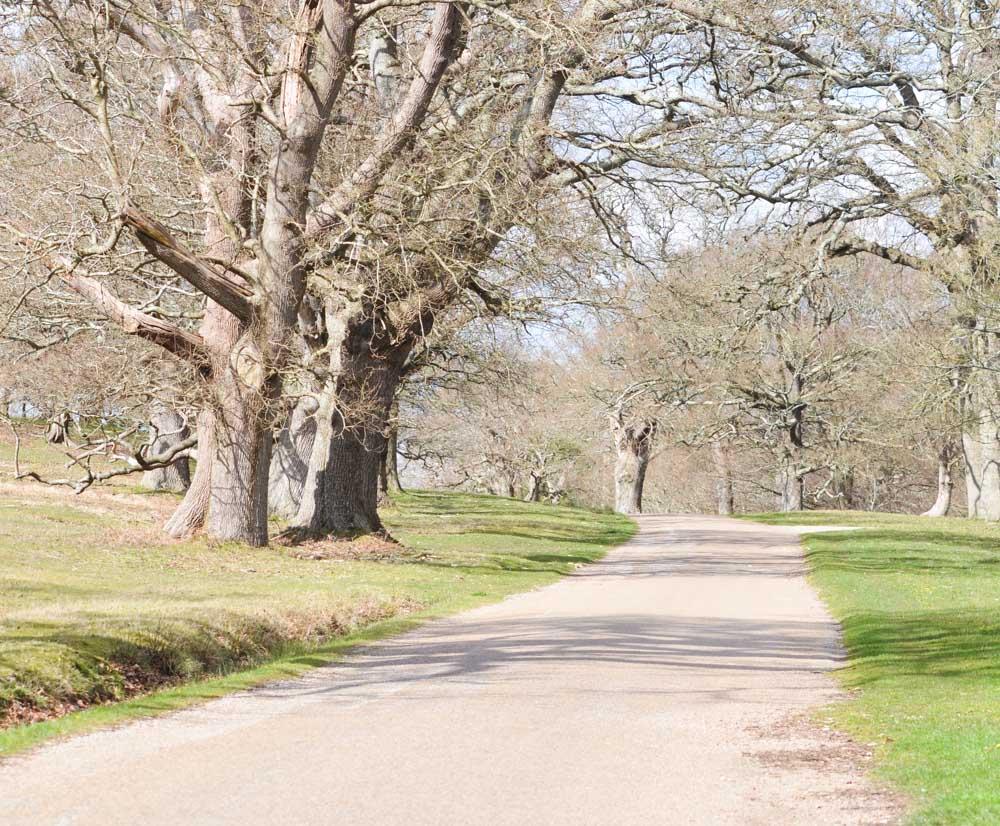 Parham Park