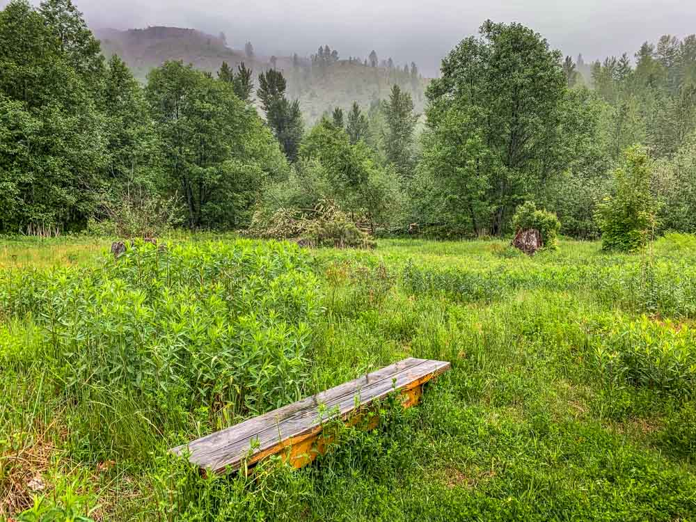 bench in first meadow