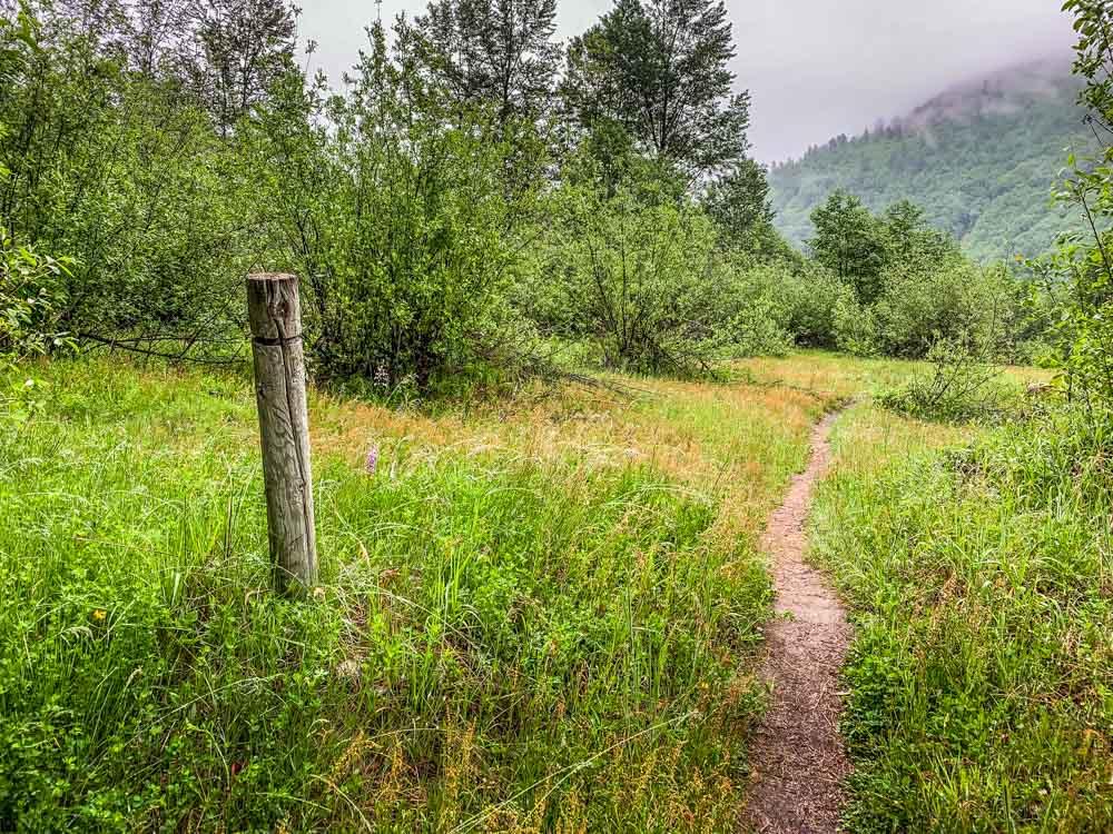 pole trail marker