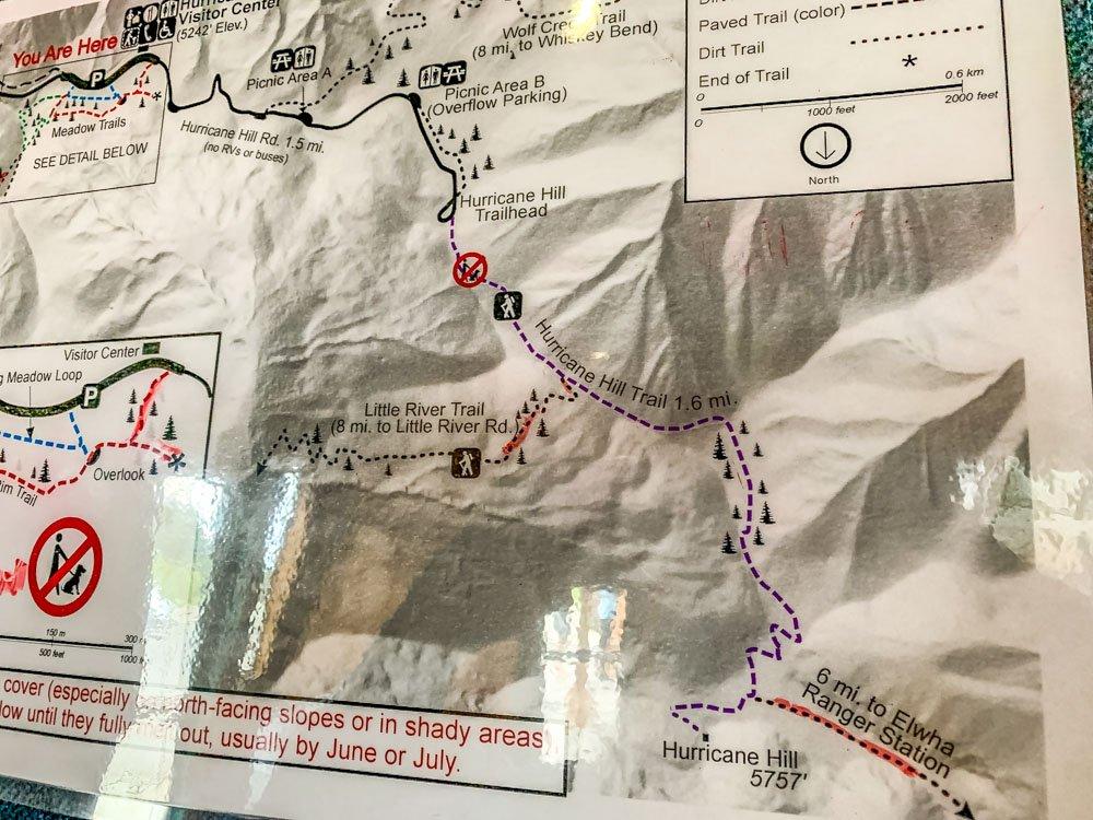 hurricane ridge trails map