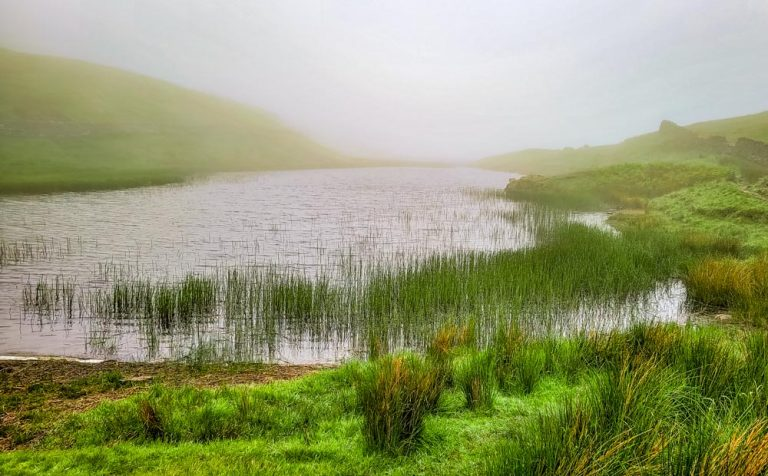 A Walk Up To Alcock Tarn From Grasmere
