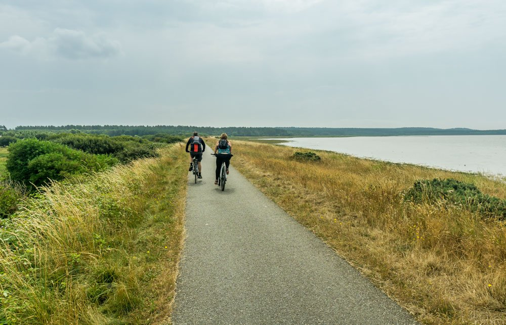 Cycling path to Newborough forest