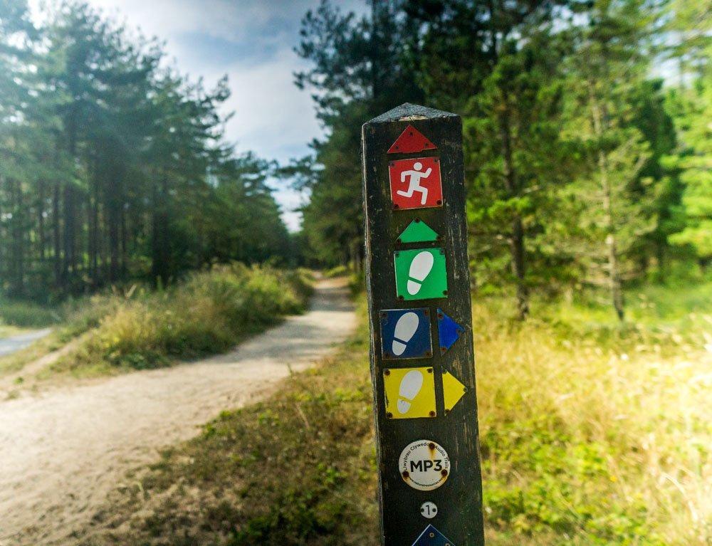 Newborough forest waymarked trails