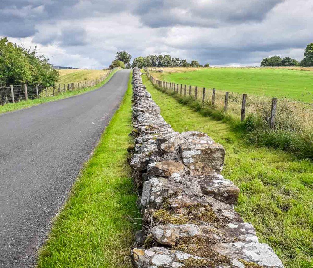 hadrians wall along a lane