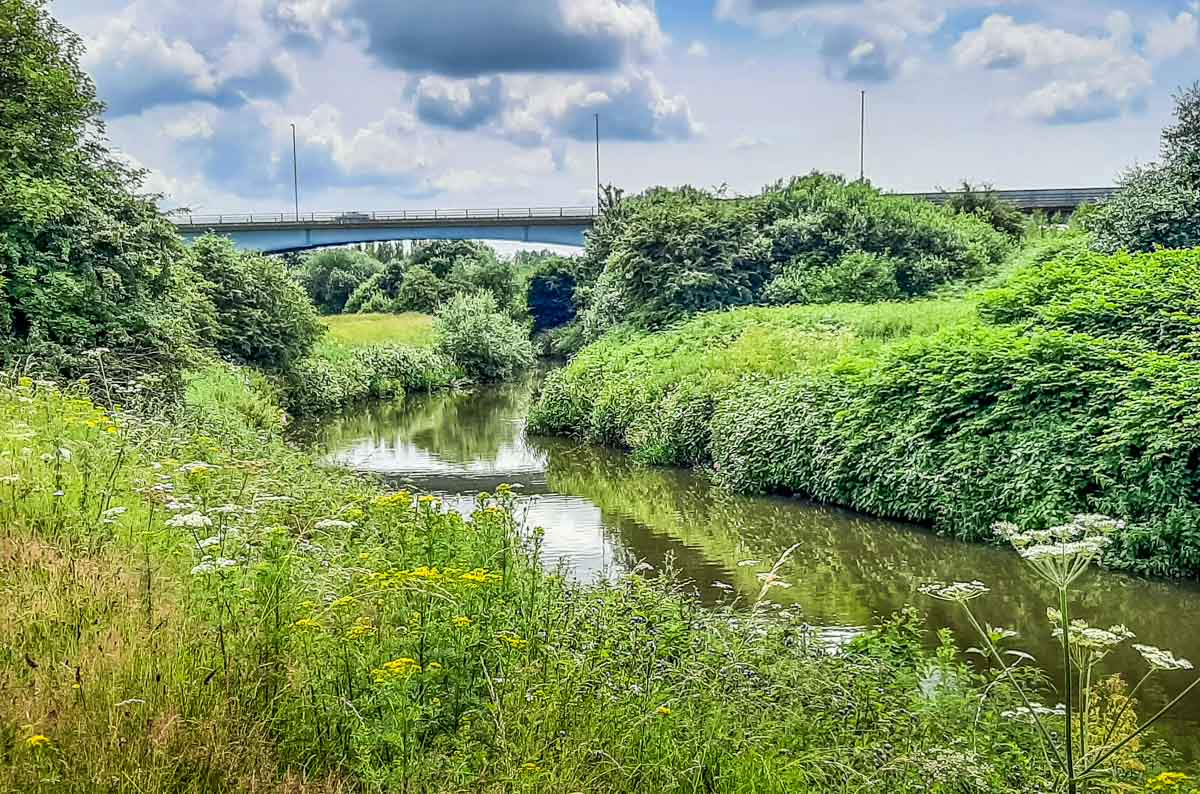 River Rother South Yorkshire