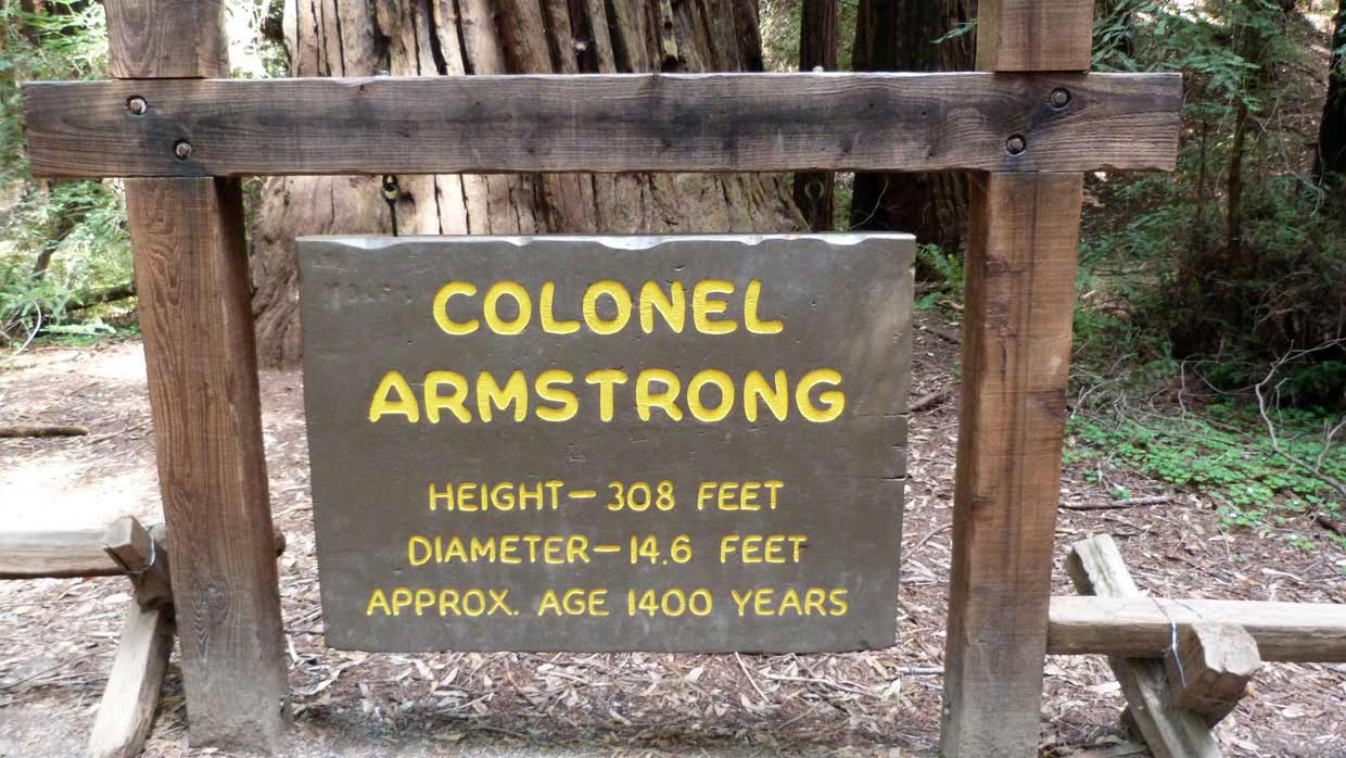 24.-Colonel-Armstrong1 Armstrong Redwoods State Natural Reserve