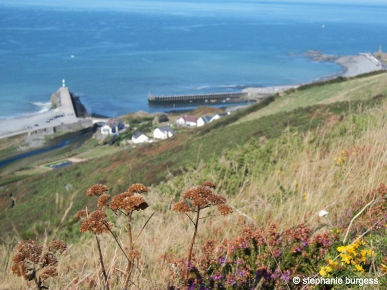 29 Wales – Pen Dinas Iron Age Hillfort, Aberystwyth